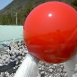 ⑫球体の施工後2